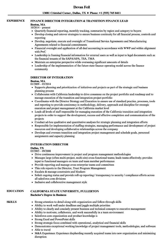 integration director resume samples