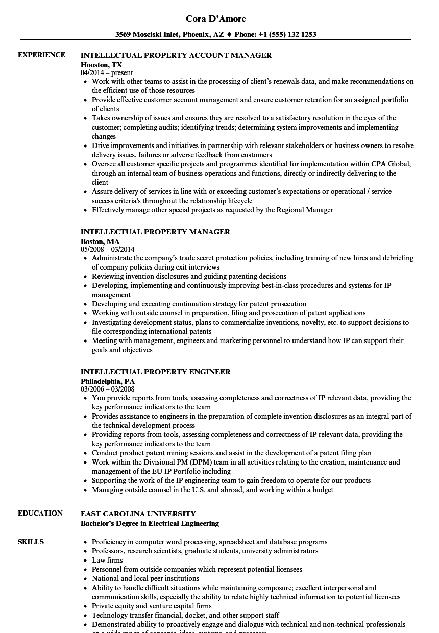 Intellectual Property Resume Samples | Velvet Jobs