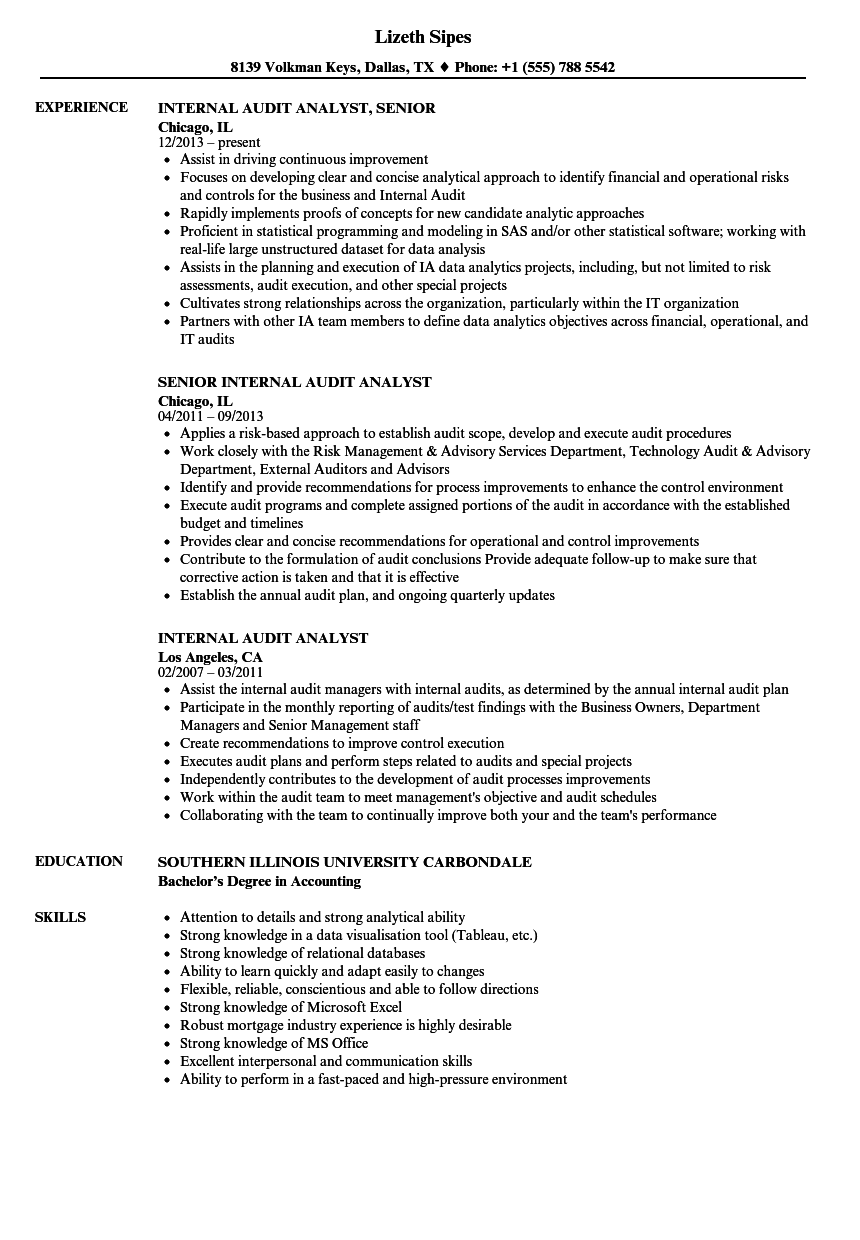 internal audit analyst resume samples