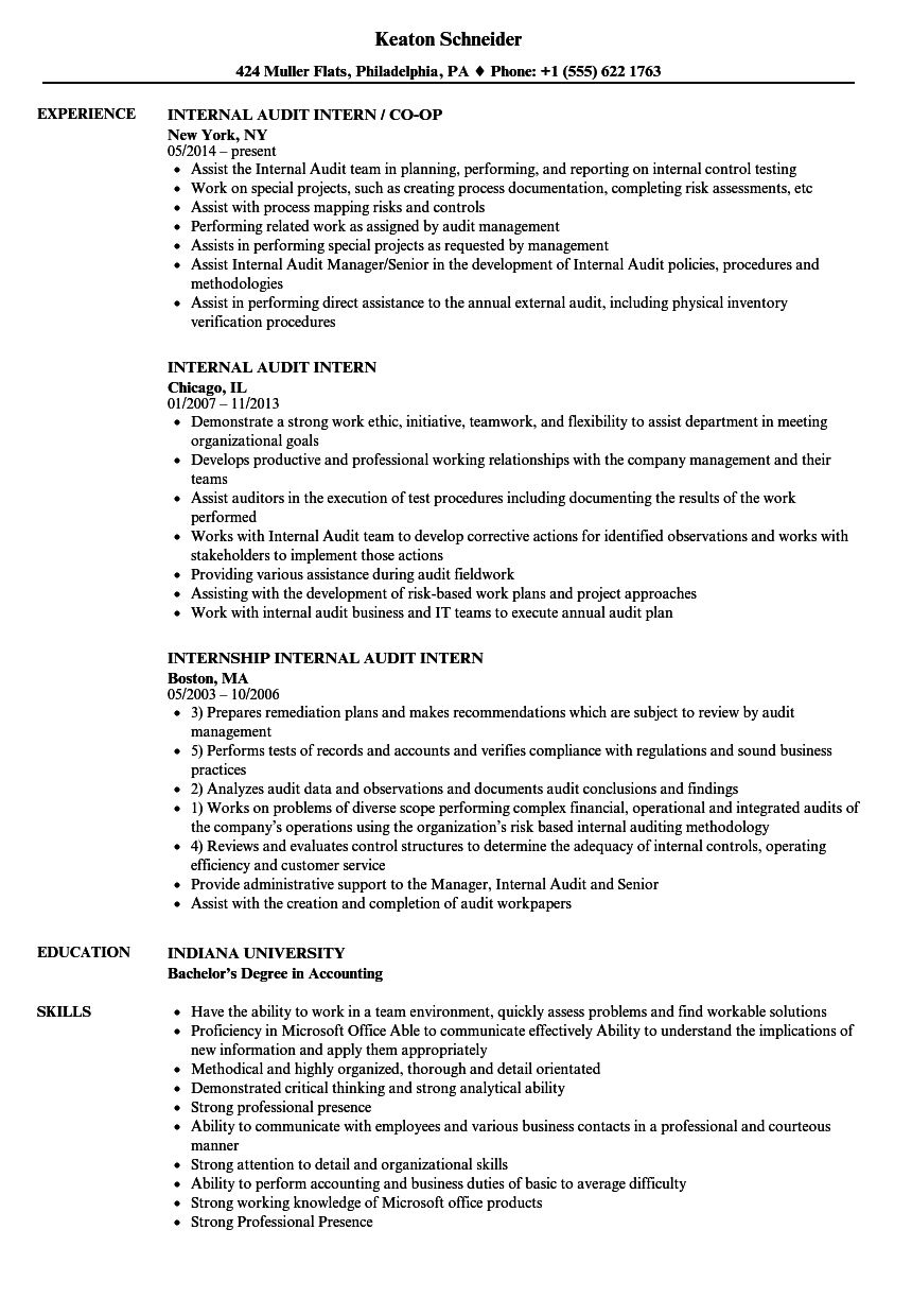 internal audit  intern resume samples
