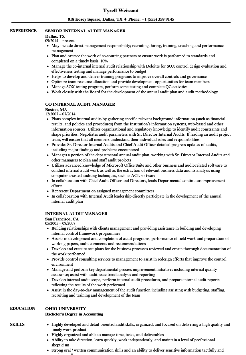 internal audit manager resume samples