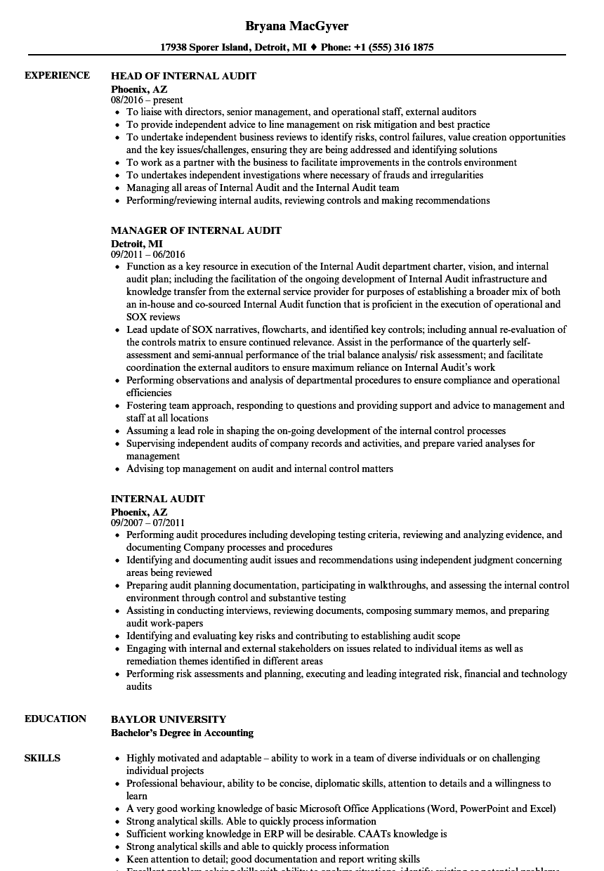 internal audit resume samples