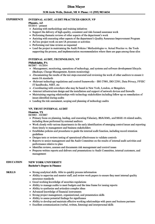 internal audit vp resume samples