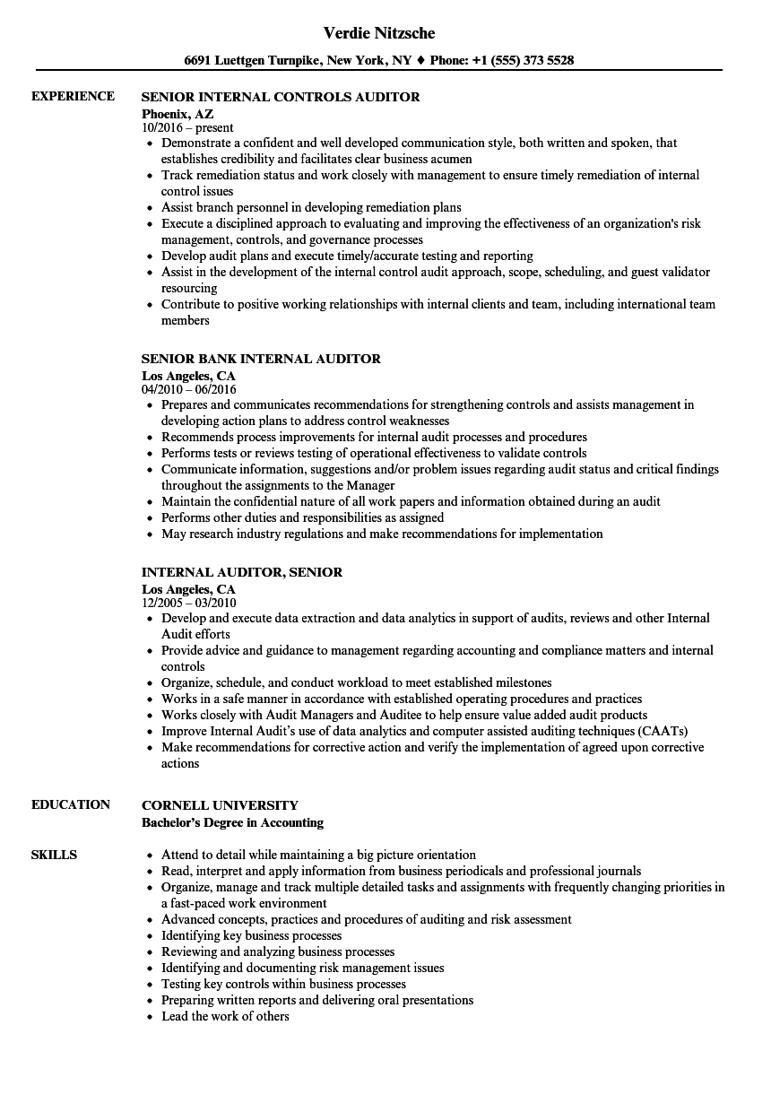 Internal Auditor, Senior Resume Samples | Velvet Jobs