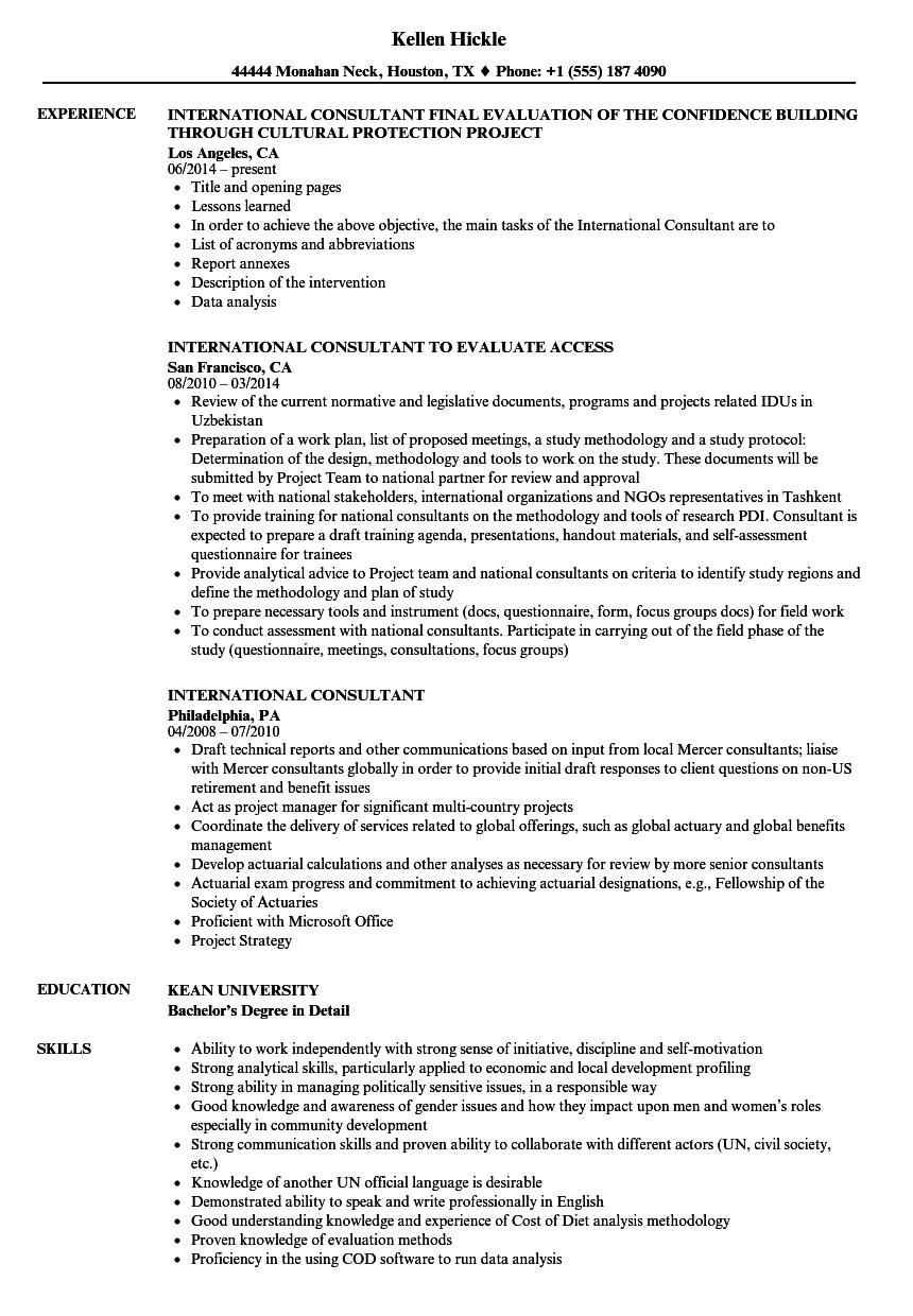 international consultant resume samples