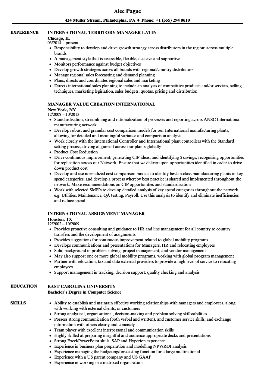 Download International Manager Resume Sample As Image File  Territory Manager Resume