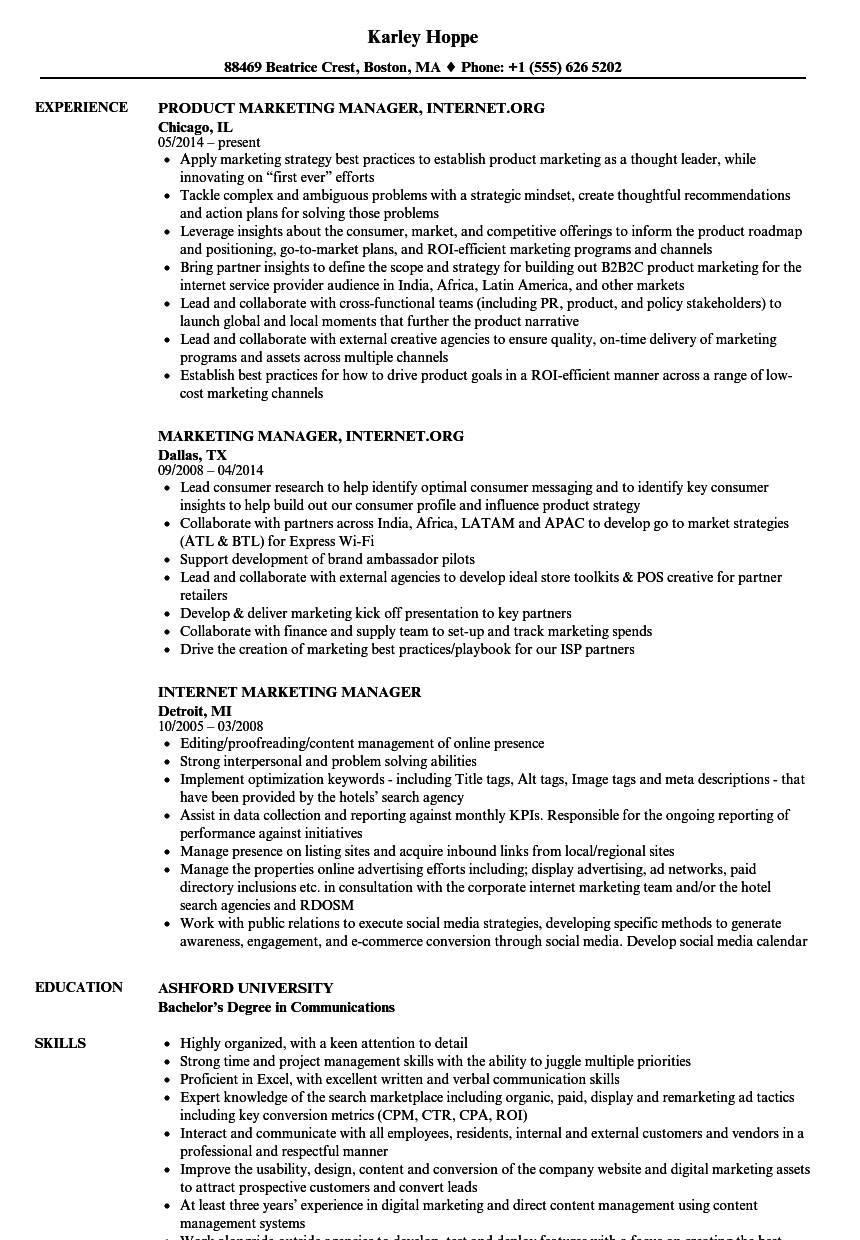 internet marketing manager resume samples