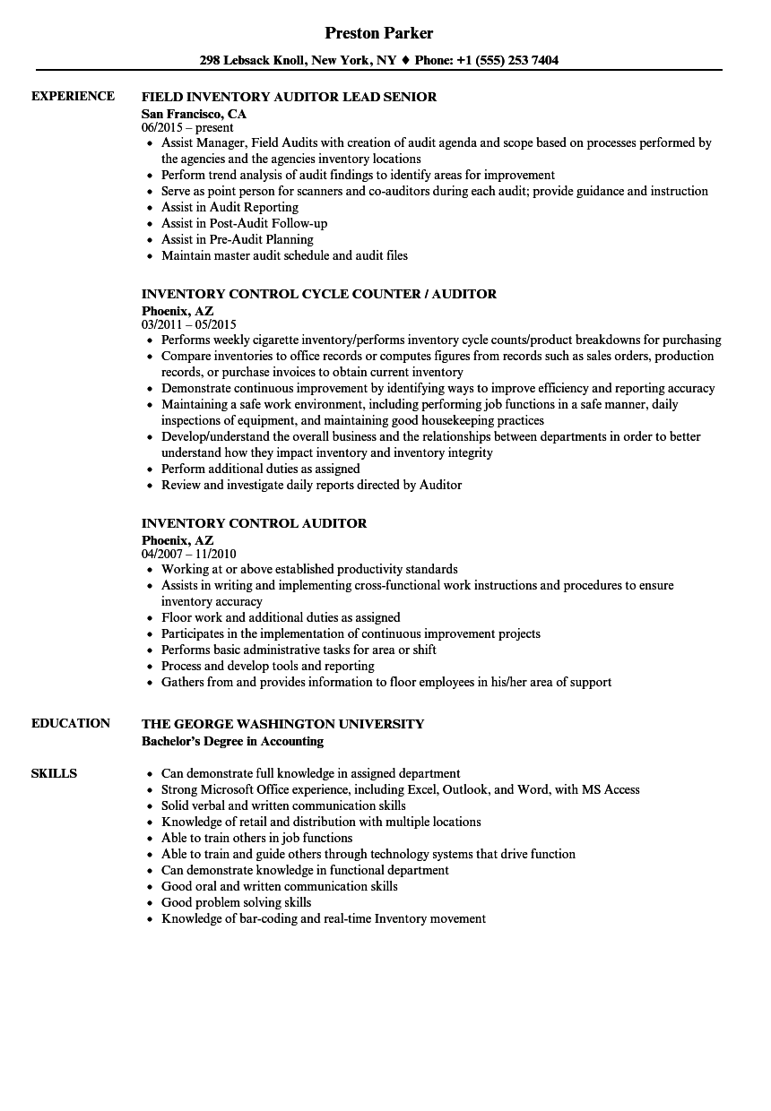 inventory auditor resume samples