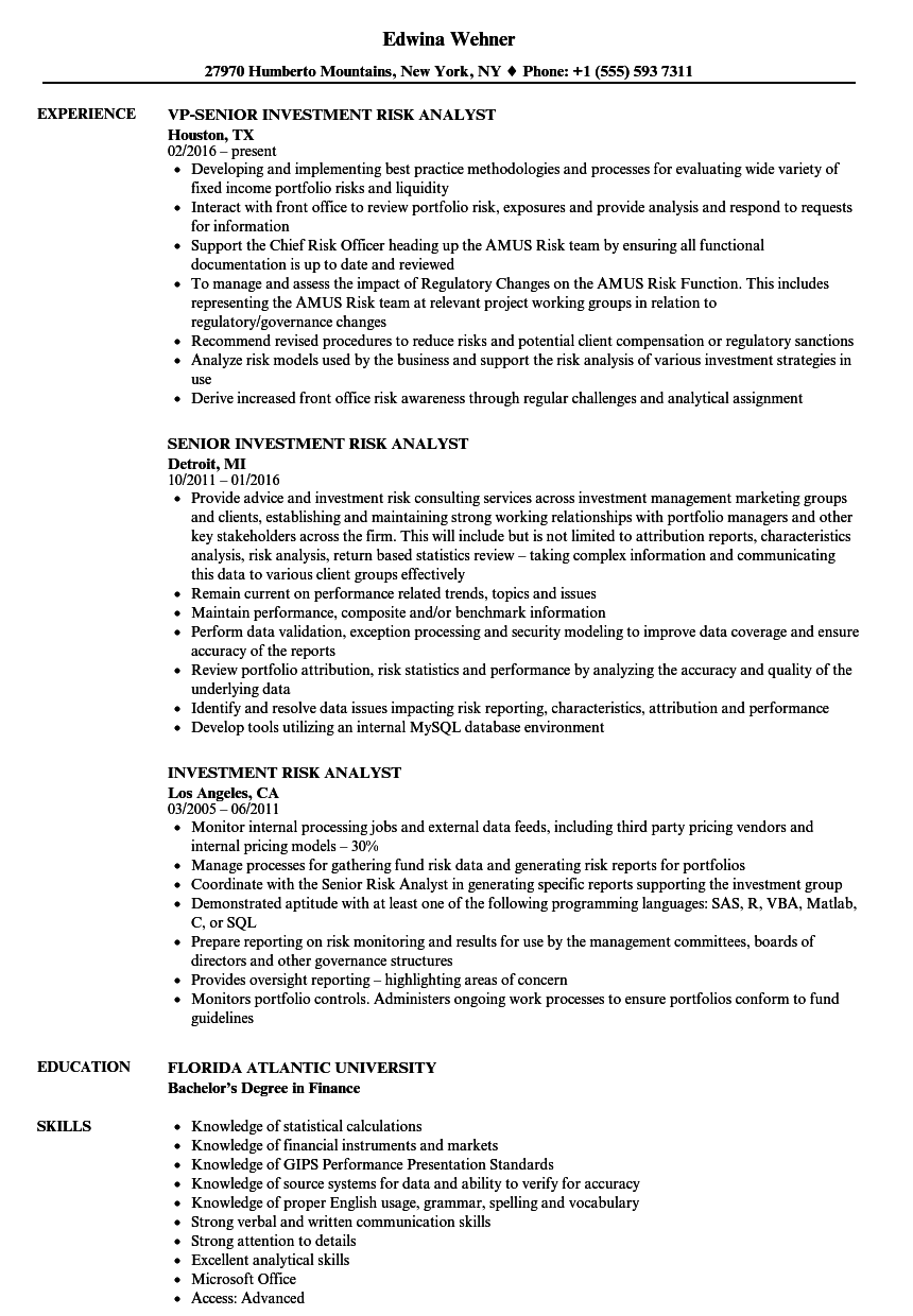 Investment Risk Analyst Resume Samples | Velvet Jobs