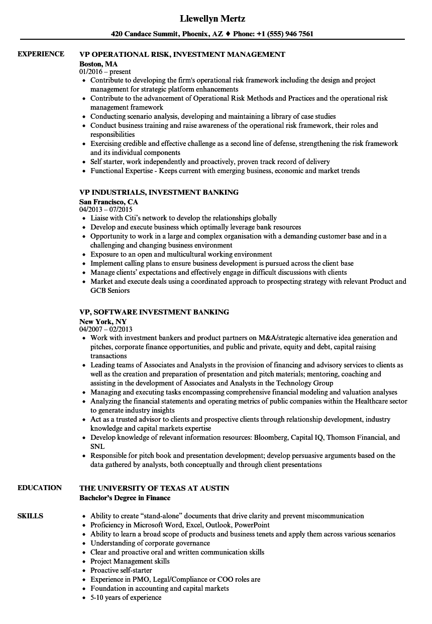 investment vp resume samples
