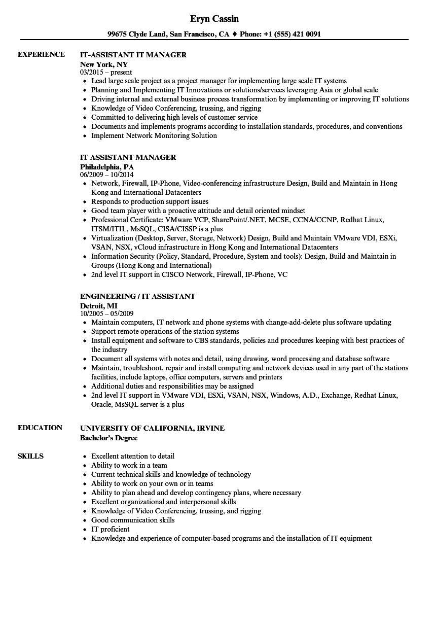 it assistant resume samples