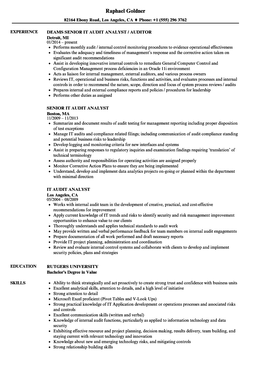 it audit analyst resume samples