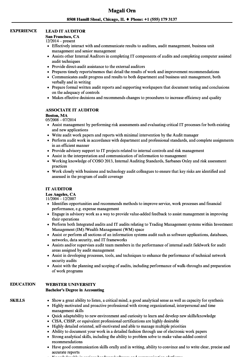 it auditor resume samples