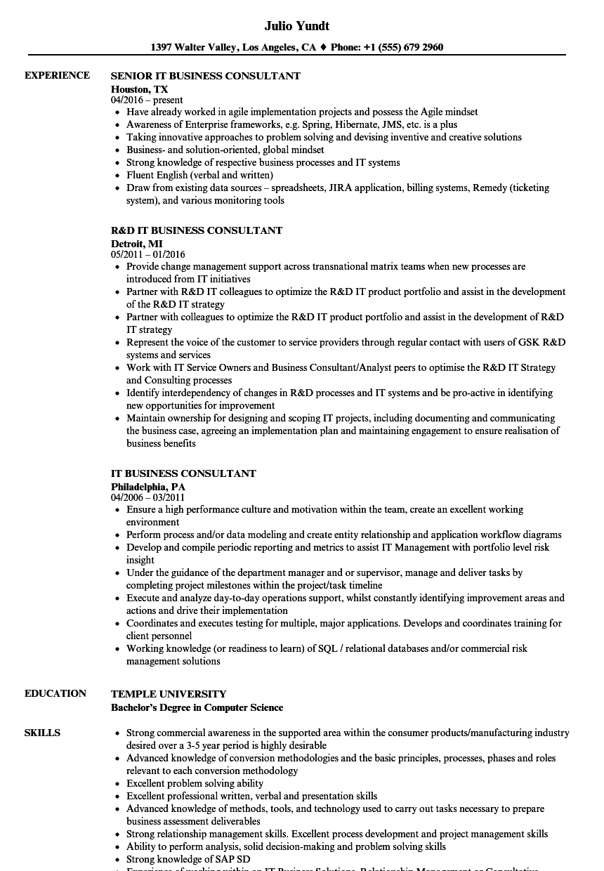 It Business Consultant Resume Samples Velvet Jobs