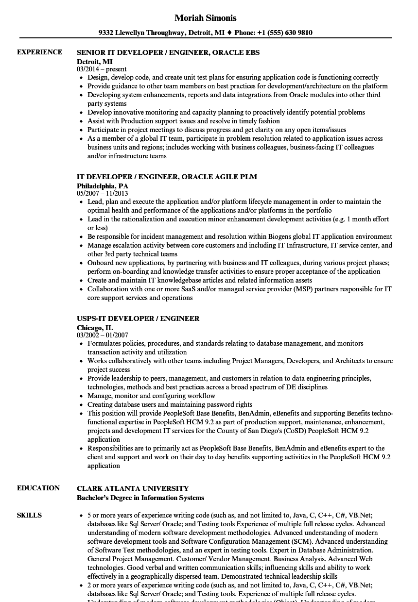 it developer engineer resume samples