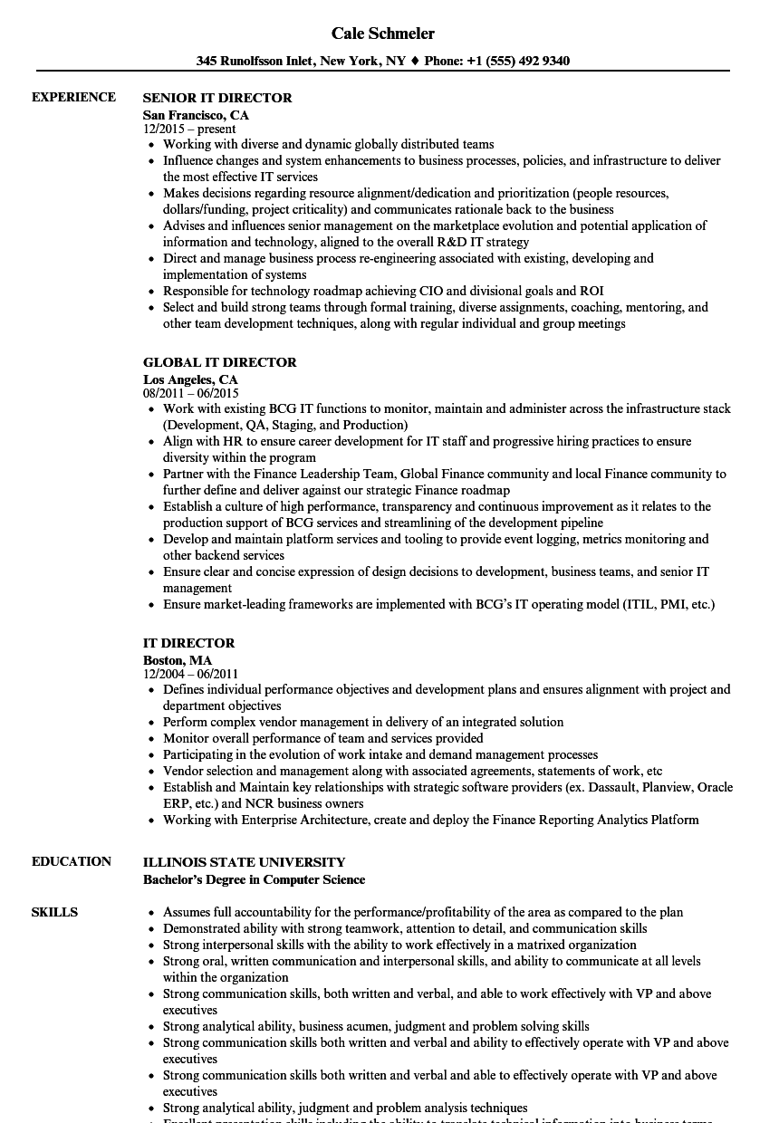 IT Director Resume Samples | Velvet Jobs