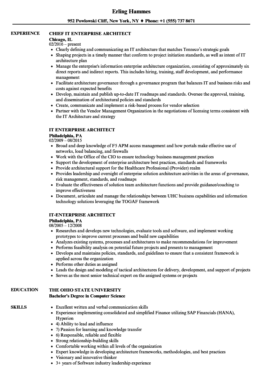 Download IT Enterprise Architect Resume Sample As Image File