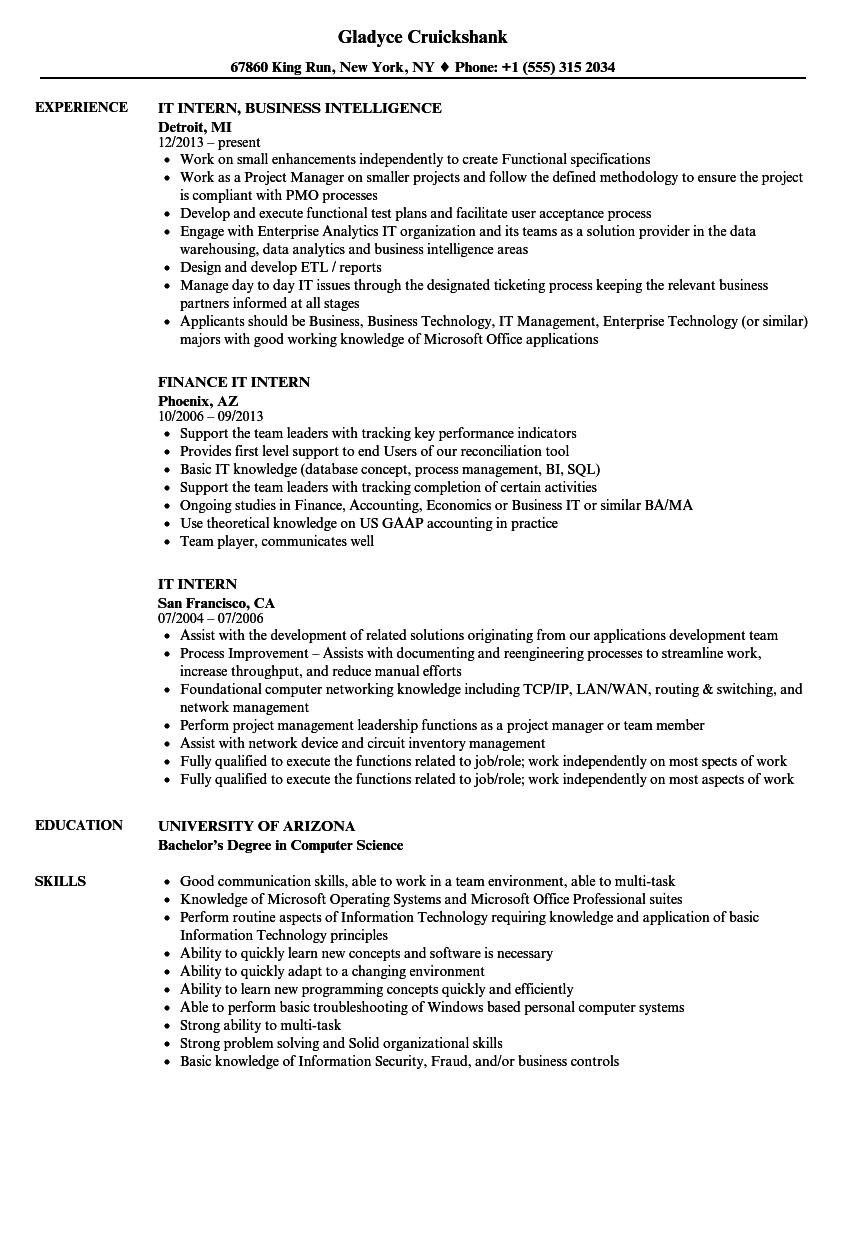 Download IT Intern Resume Sample As Image File  It Intern Resume