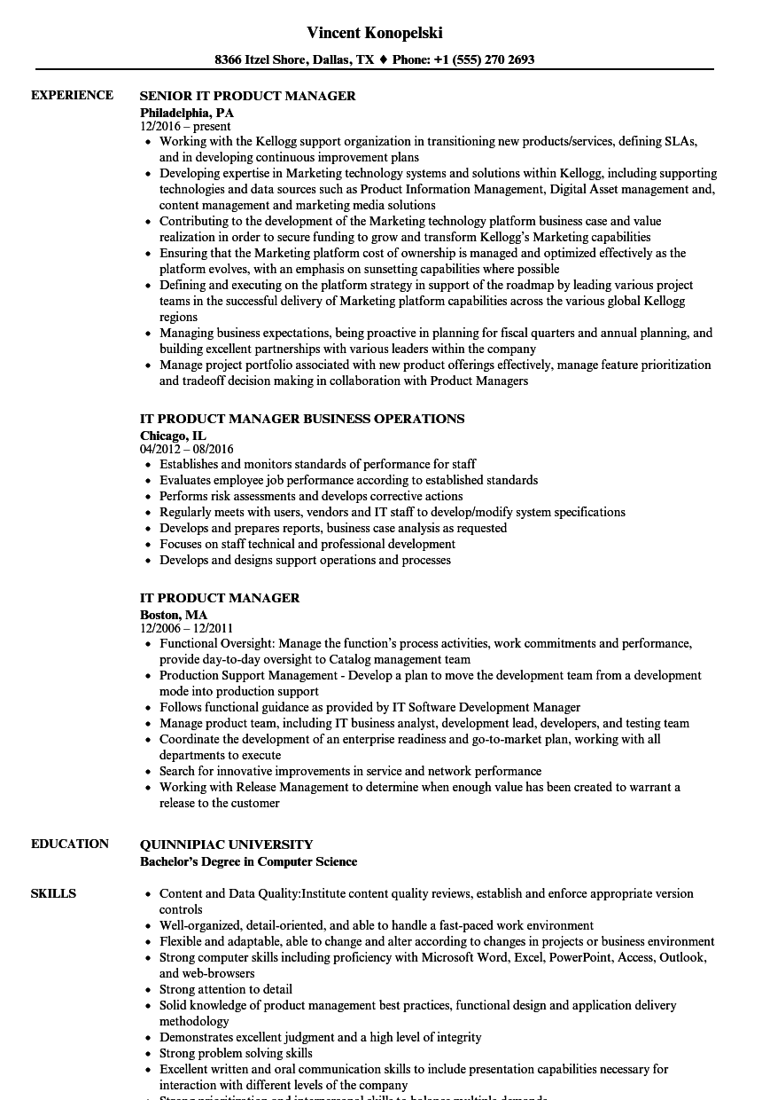 Download IT Product Manager Resume Sample As Image File