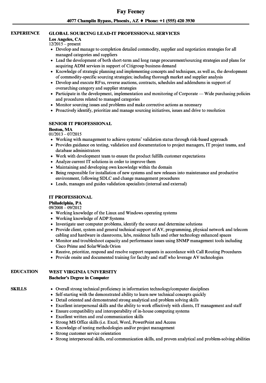 Download IT Professional Resume Sample As Image File  It Professional Resume