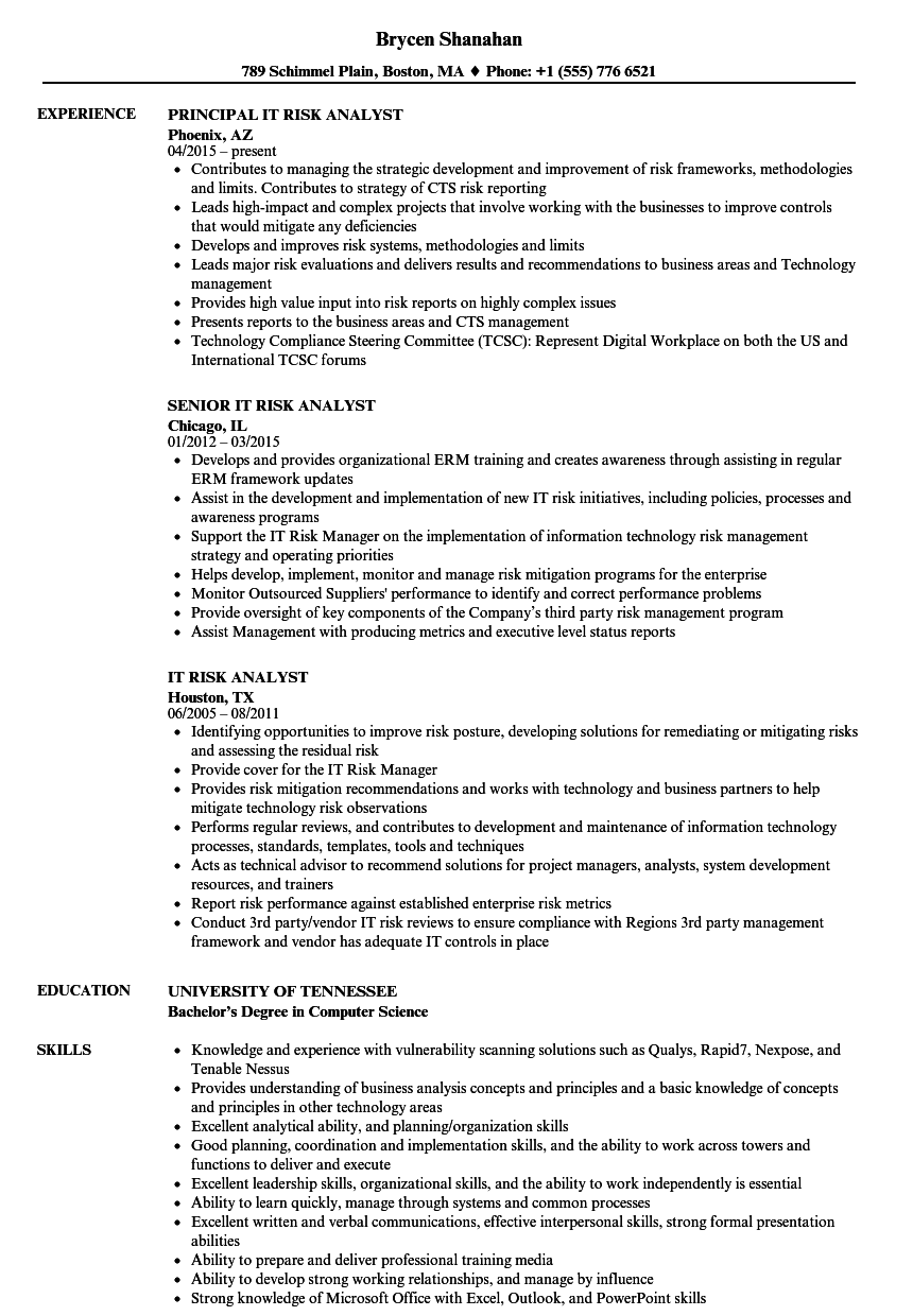 it risk analyst resume samples