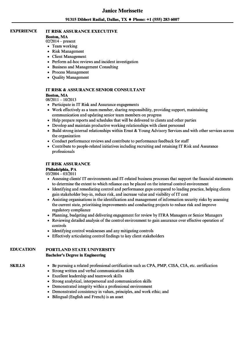 it risk assurance resume samples velvet jobs