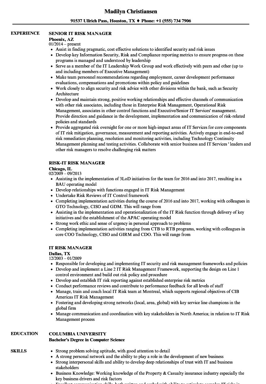 download it risk manager resume sample as image file - It Manager Resume Sample