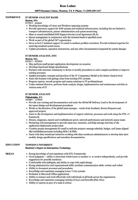 Download IT Senior Analyst Resume Sample As Image File