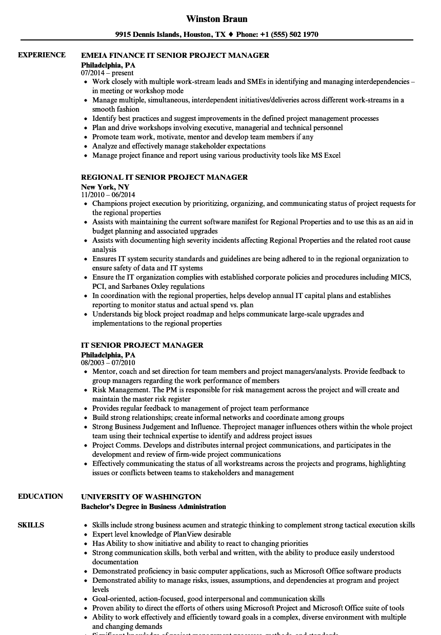 It Senior Project Manager Resume Samples Velvet Jobs