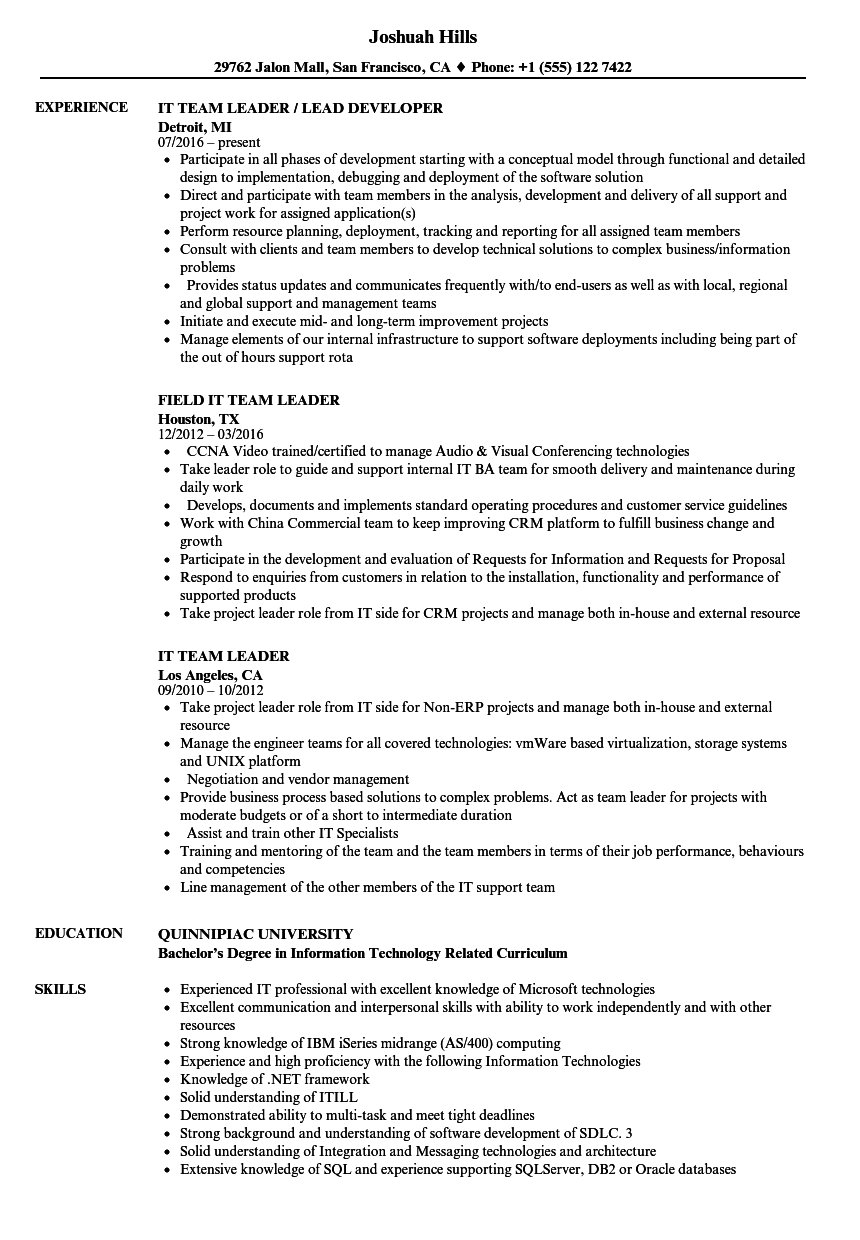 IT Team Leader Resume Samples | Velvet Jobs