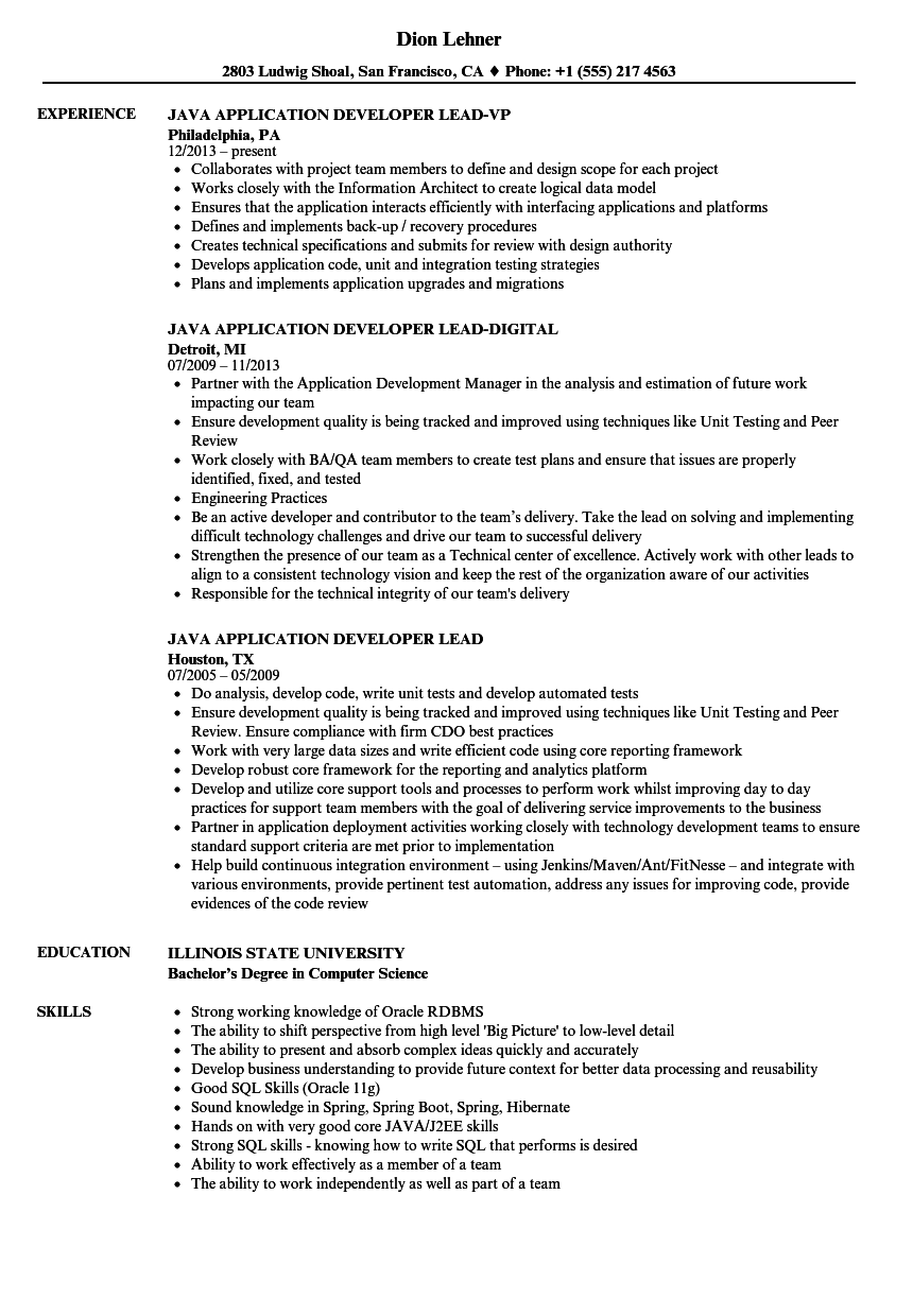 Java Application Developer Lead Resume Samples | Velvet Jobs