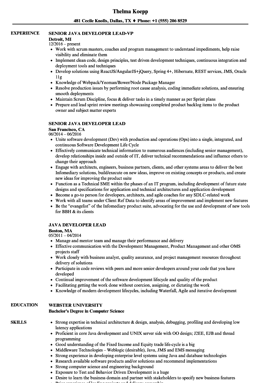 Java Developer Lead Resume Samples | Velvet Jobs