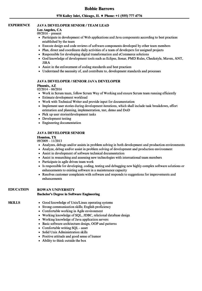 java developer  senior resume samples