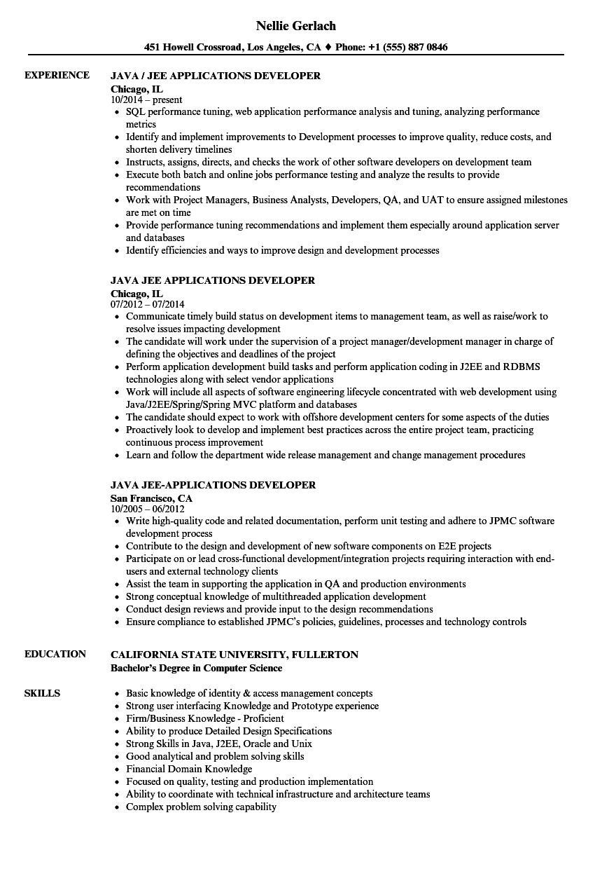 Java / JEE Applications Developer Resume Samples | Velvet Jobs