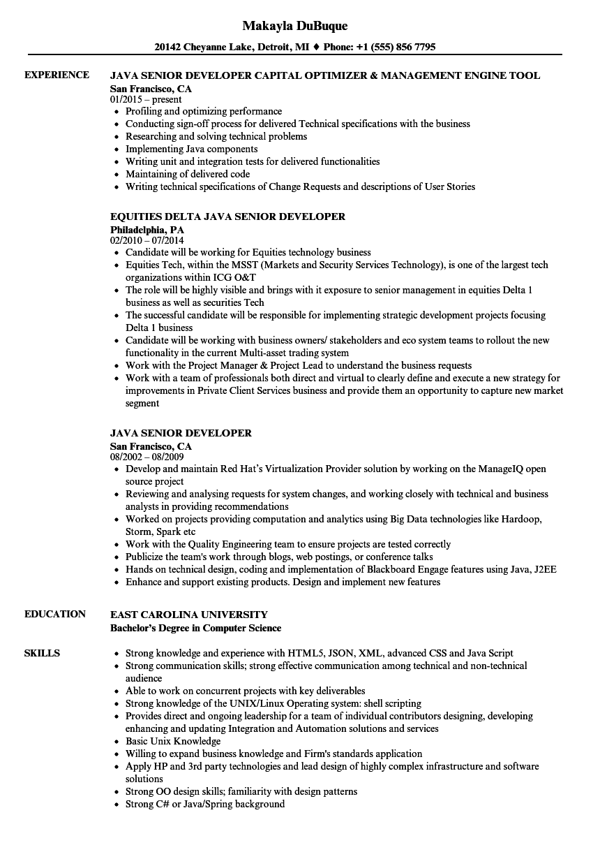 java senior developer resume samples