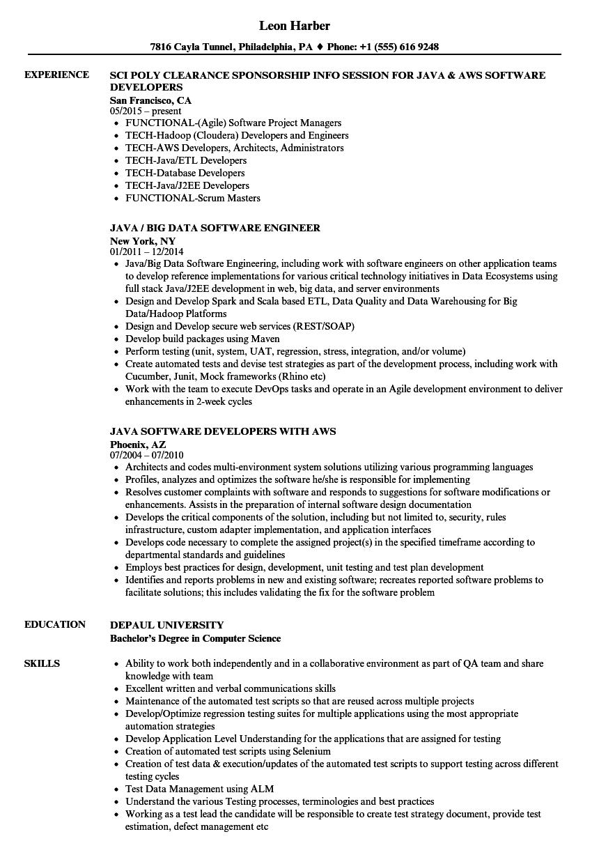 Java Swing Developer Resume
