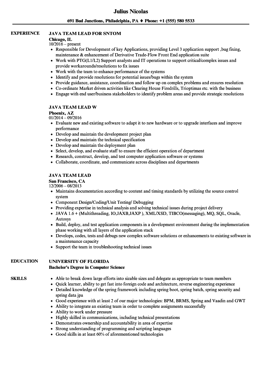 Java Team Lead Resume Samples | Velvet Jobs