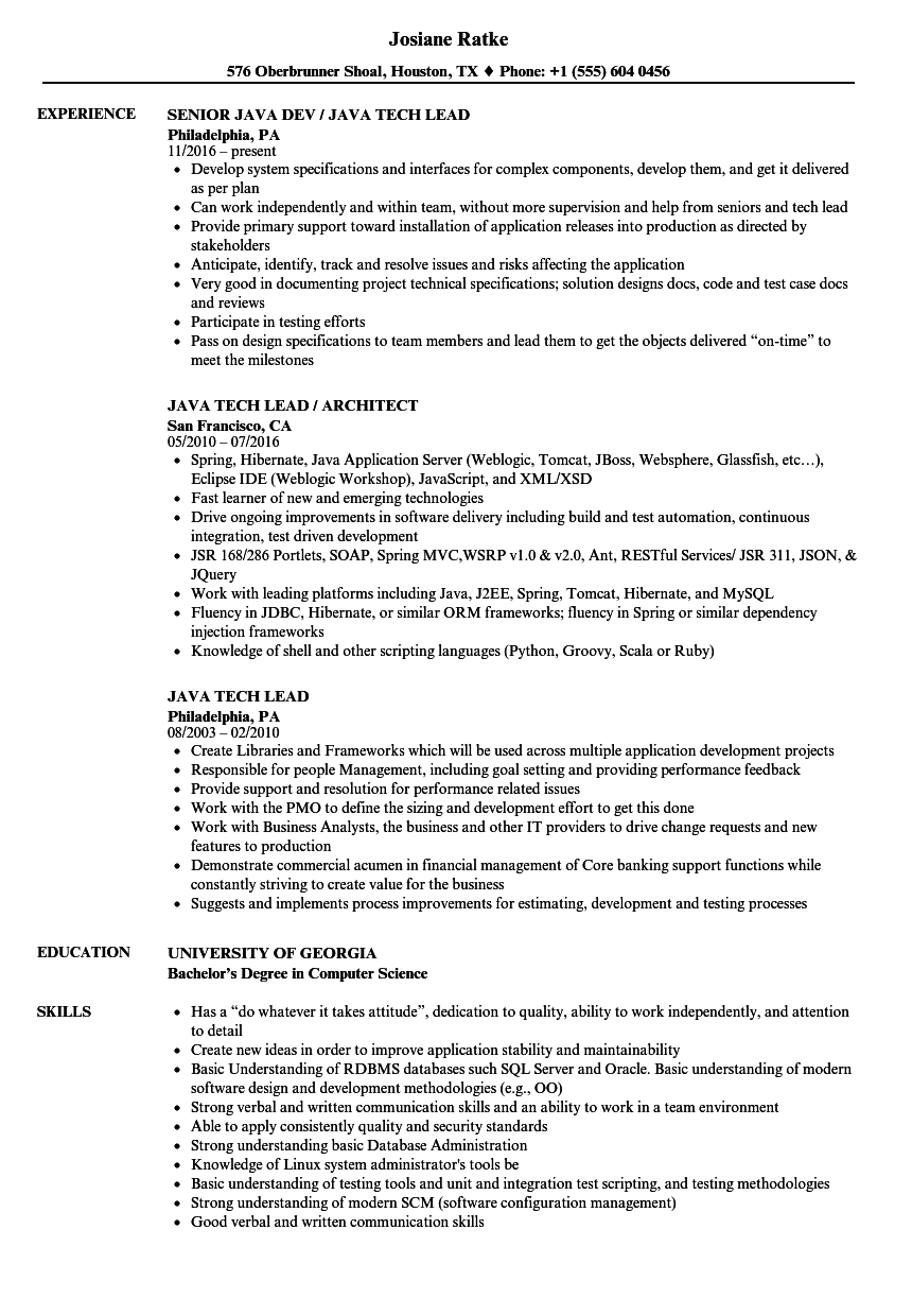 java tech lead resume samples