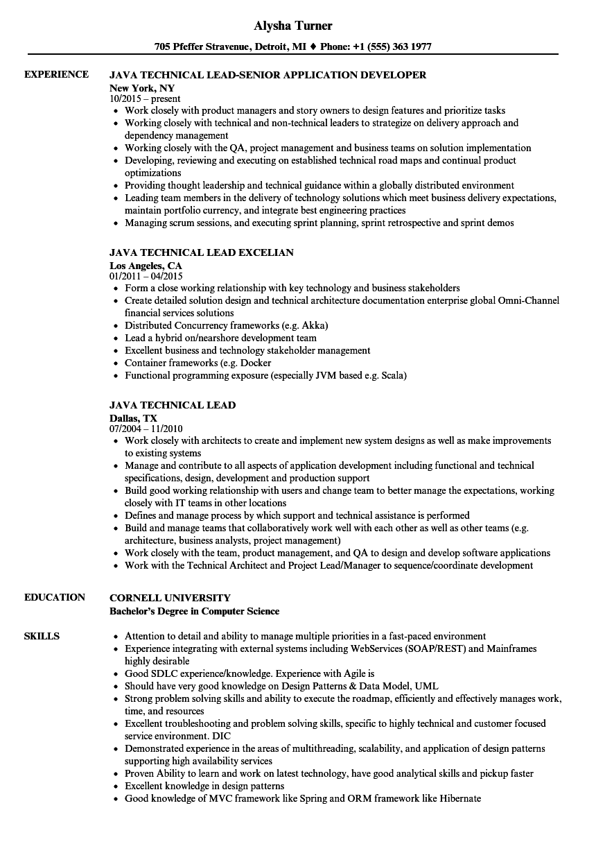 Java Technical Lead Resume Samples | Velvet Jobs