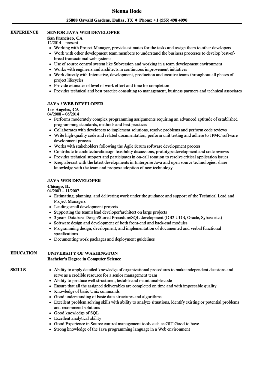 Java Web Developer Resume Samples | Velvet Jobs