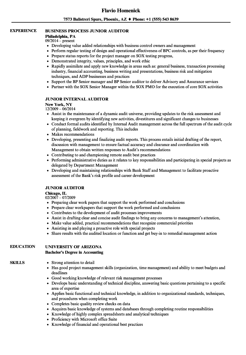Junior Auditor Resume Samples | Velvet Jobs