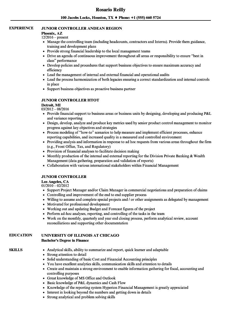 junior controller resume samples