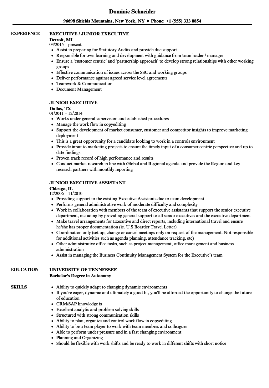 Junior Executive Resume Samples Velvet Jobs