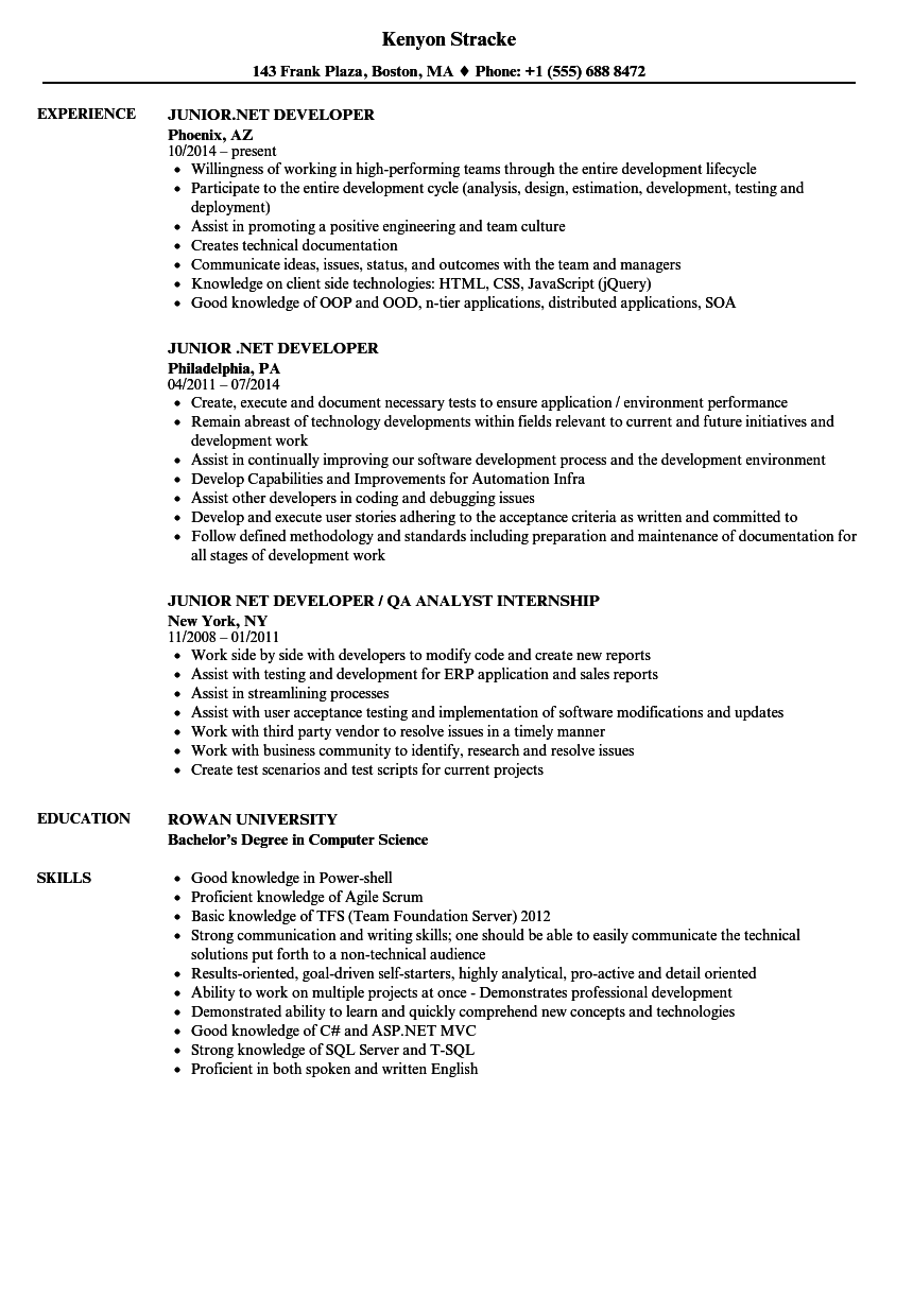 junior net developer resume samples velvet jobs