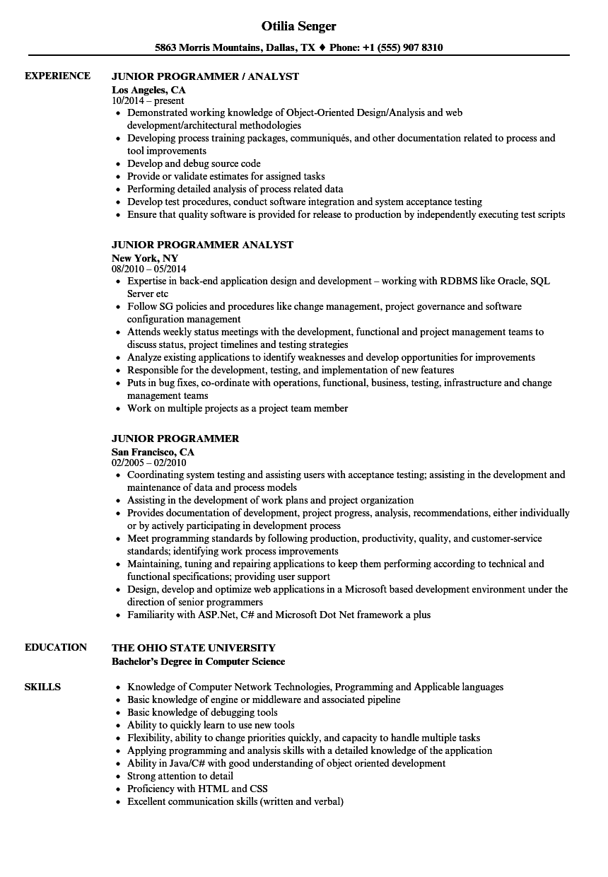 junior programmer resume samples velvet jobs