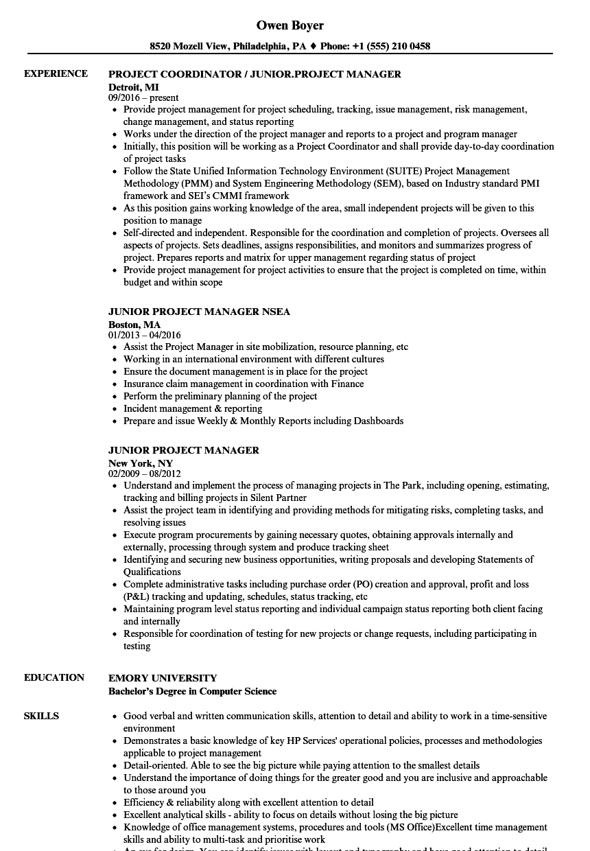 Junior Project Manager Resume Samples Velvet Jobs