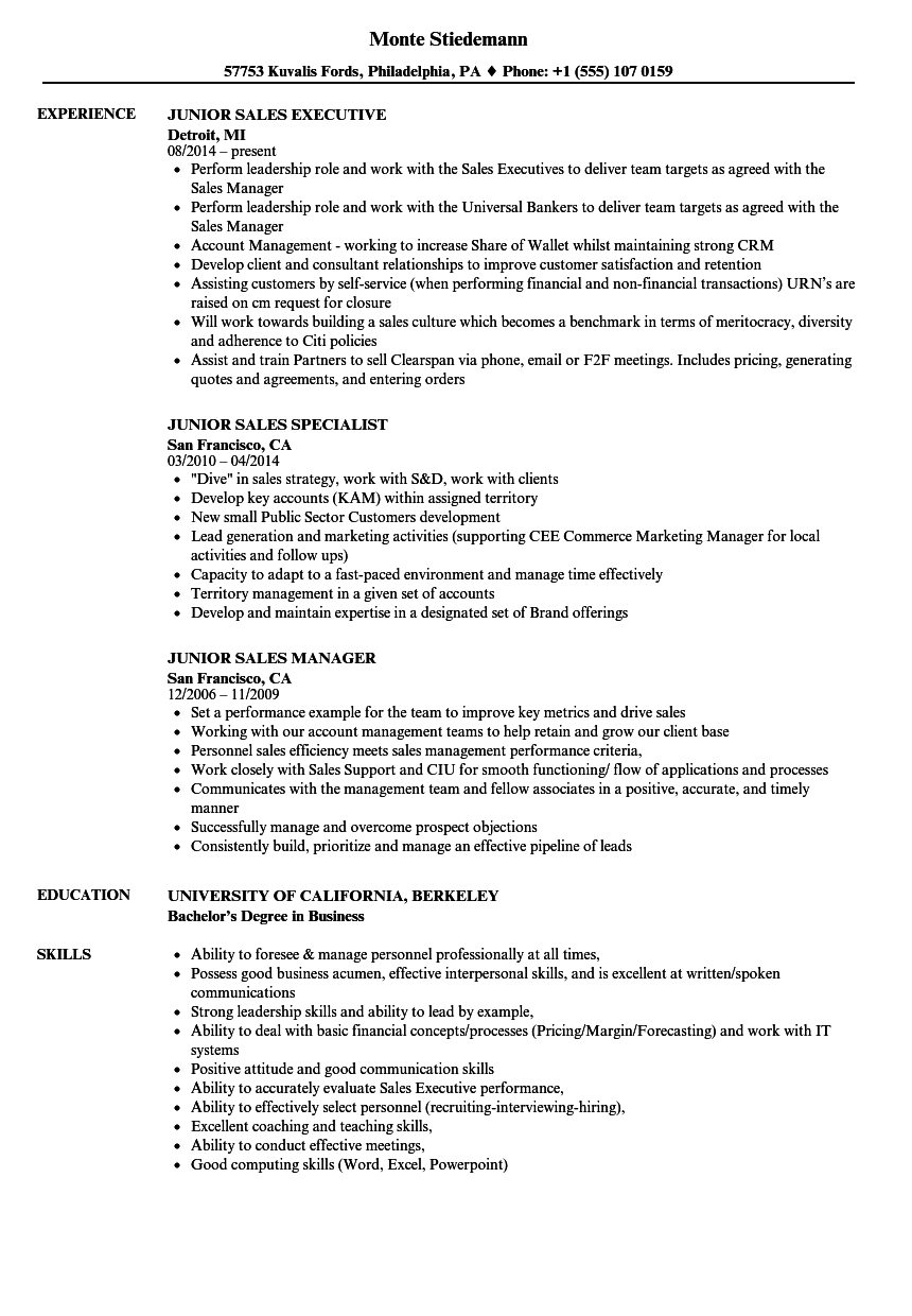 download junior sales resume sample as image file - Junior Sales Resume