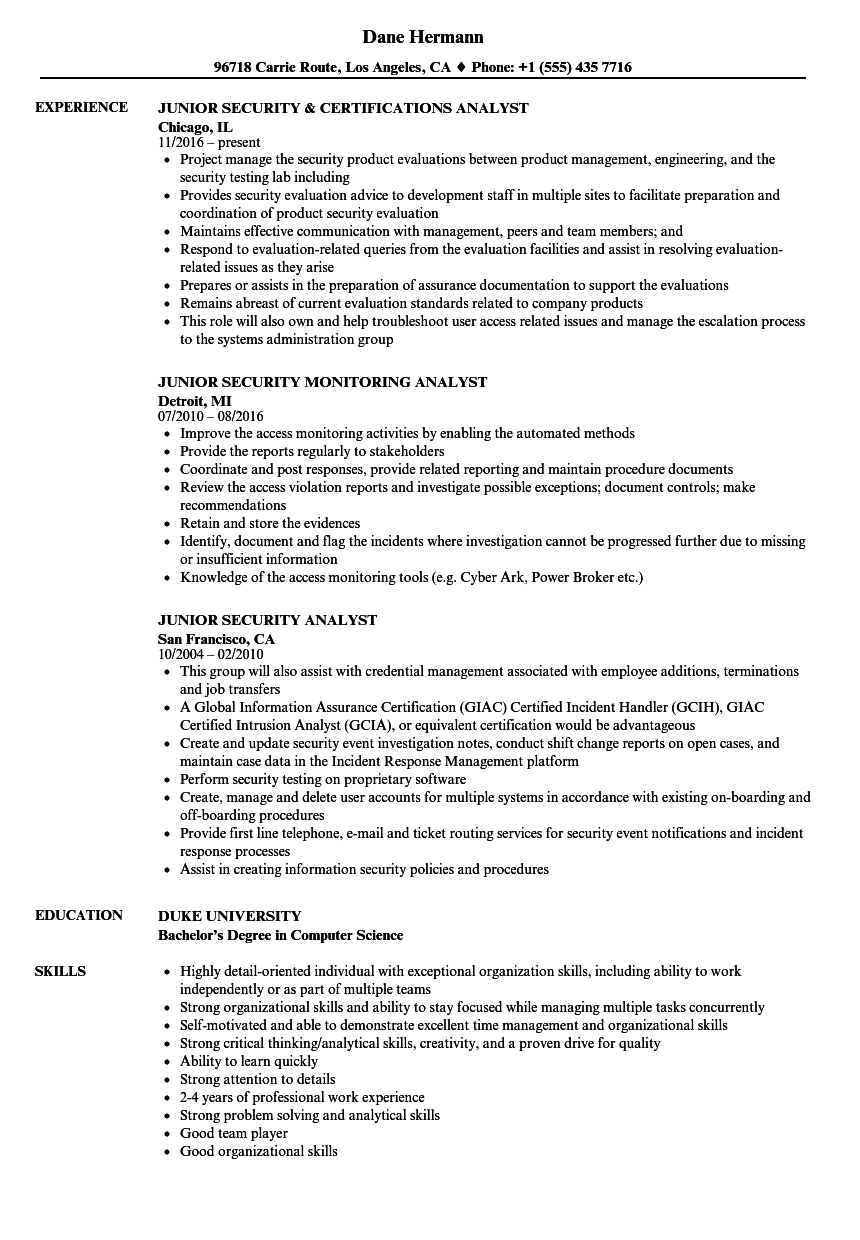 junior security analyst resume samples