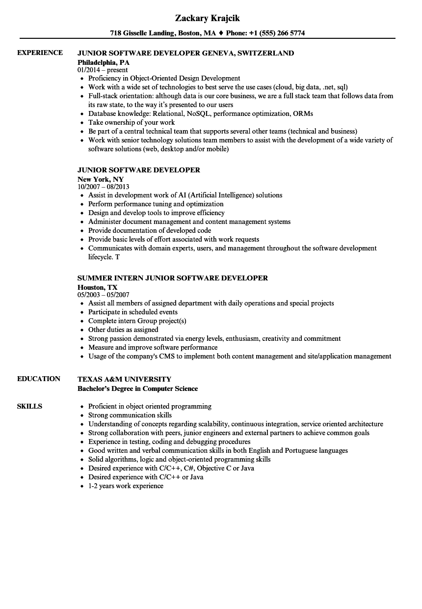 Junior Software Developer Resume Samples | Velvet Jobs