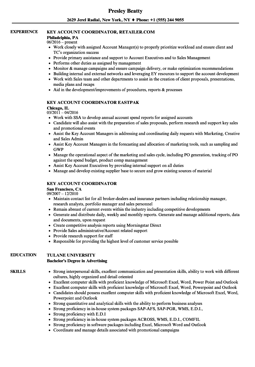 Key Account Coordinator Resume Samples Velvet Jobs